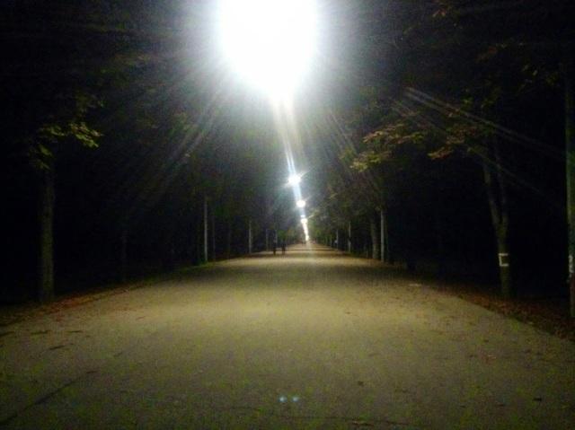 Praterallee bei Nacht
