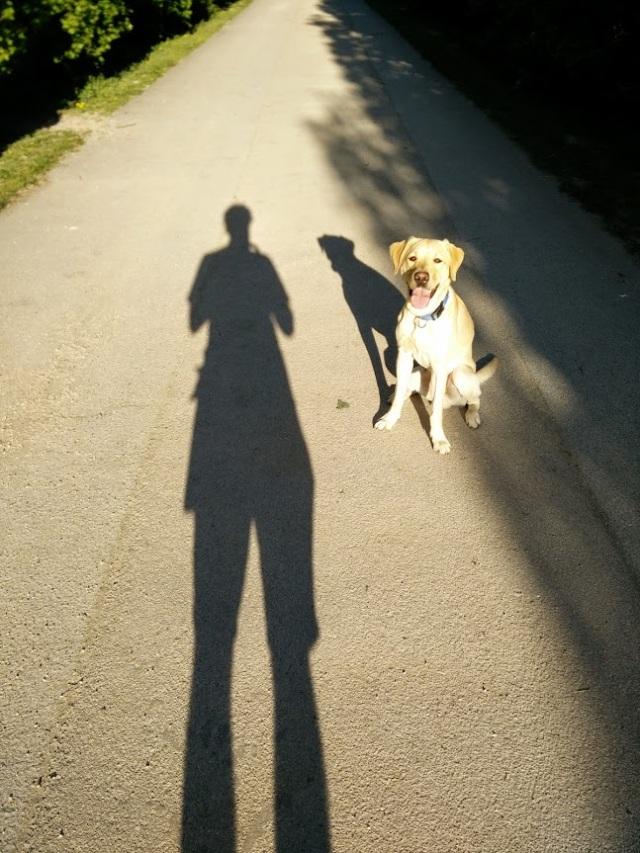 Mein zweiter Schatten - Chewy